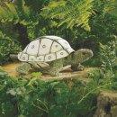 Folkmanis (Land)Schildkröte