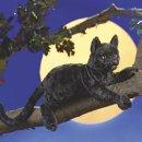Folkmanis Schwarze Katze