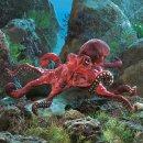 Folkmanis Roter Oktopus